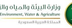وزارة البيئة والمياه والزراعة تتوصل للقاح تحصين ضد أمراض الخراريج