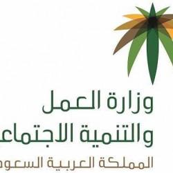 وزارة العمل والتنمية الاجتماعية تصدر الدليل الاسترشادي لقواعد أخلاقيات العمل