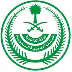 شرطة دبي تقبض على 80 متهماً بتهريب مخدرات