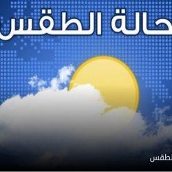 حرس الحدود يقبض على 22 مهربا بحوزتهم طن من الحشيش