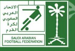 الاتحاد السعودي للرياضة المجتمعية ينفذ فعاليات يوم النشاط العائلي بمنطقة الحدود الشمالية