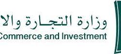 خادم الحرمين الشريفين يستقبل رئيس المجلس الرئاسي لحكومة الوفاق الوطنية الليبية