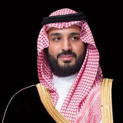 سمو وزير الداخلية : جهود سمو ولي العهد نقلت المملكة إلى مصاف الدول المتقدمة