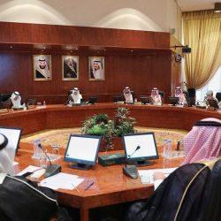 شركة اماثل ورؤية مستقبلية لخدمة المجتمع السعودي