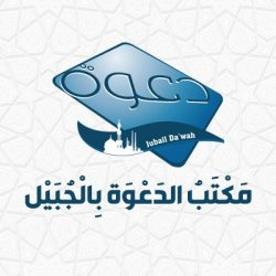 10 شركات هولندية تعرض مشروعاتها على مجتمع الأعمال السعودي بغرفة جدة