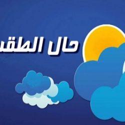 أول حفل توقيع للرائدية في مصر