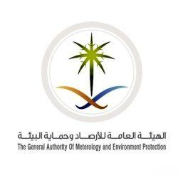"""""""البيئة"""" تكافح أسراب الجراد الصحراوي في منطقتي مكة المكرمة والمدينة المنورة"""