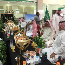 """""""البيئة"""" تعلن عن 168 وظيفة للرجال بنظام التعاقد في مختلف مناطق المملكة"""