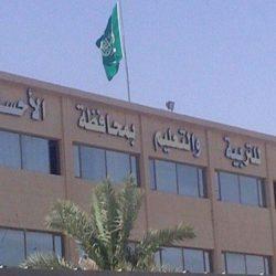 المملكة العربية السعودية تتولى رئاسة مجموعة العشرين لعام 2020 م