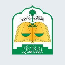 الدكتور محمد العبدالعالي مساعدا لوزير الصحة