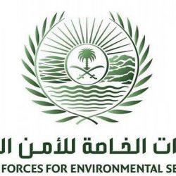 جامعة الملك عبدالعزيز بجدة تعلن نتائج الفرز الثالث والأخير للقبول للعام الجامعي الجديد