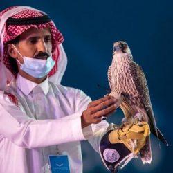 استئصال ورم بالمناظير الدقيقة في مستشفى الملك فهد بالهفوف