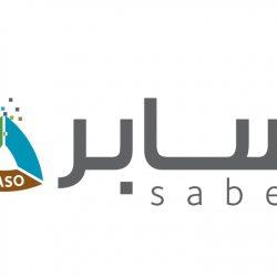 آل الشيخ: التعليم عن بُعد أصبح خياراً إستراتيجياً للمستقبل.. والمرحلة الحالية فرصة للتغيير والتطوير
