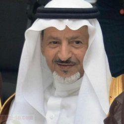 الاتحاد السعودي لكرة الطاولة يصدر جداول منافسات الدوري 2020-2021
