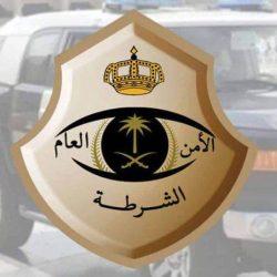 الجهات الأمنية بالأمن العام تضبط (44) مركبة محملة بالحطب المحلي المعدّ للبيع في عدد من مناطق المملكة لمخالفتها لنظام المراعي والغابات