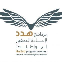 الفيصل يدشن غدًا مشروع الربط الإلكتروني بين الجهات بالمنطقة