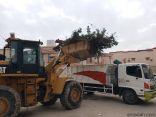 بلدية الخفجي: معالجة 26 عنصراً من عناصر التشوه البصري ضمن حملات تحسين المشهد الحضري خلال شهر