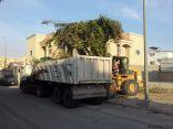بلدية #الخفجي : رفع أكثر من 5 آلاف م3 نفايات وأنقاض خلال أسبوعين